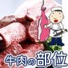 牛肉の部位とカロリーは?名称や特徴を画像でわかりやすく説明!