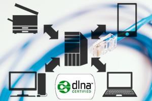 DLNAとは!NASとの違いは?DTCP-IPもあわせて簡単解説