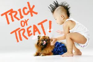 ハロウィンでお菓子をもらう時の言葉「Trick or Treat」の意味!