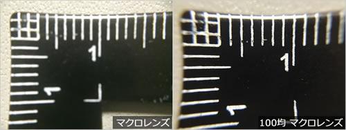 スマホカメラ用レンズで撮影比較!「MX-601マクロレンズ vs 100均マクロレンズ」アップ画像