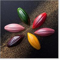 バレンタインチョコにおすすめのブランド「Chocolat Royal Fruit(ショコラ ロワイヤル フリュイ)」