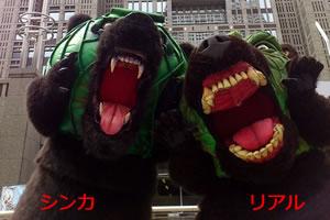 北海道のゆるキャラ メロン熊!「シンカ(3号)とリアル(2号)」