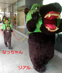 北海道のゆるキャラ メロン熊!「リアル(2号)となっちゃん」