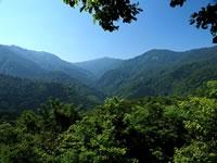 日本の世界遺産画像「白神山地」