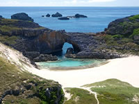 日本の世界遺産画像「小笠原諸島」